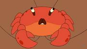 Craboo