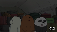 S02 Baby Bears on a Plane (25)