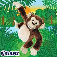 Preview chimpanzee
