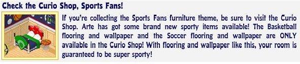 Check the Curio Shop Sports Fans