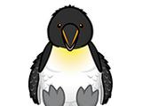 Signature Penguin