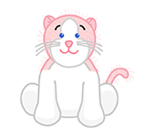 Pink & White Cat