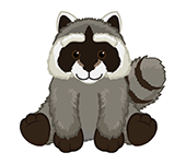 Signature Woodland Raccoon