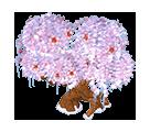 Frozen Cherry Blossom Tree