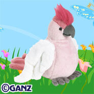 Preview pink cockatoo