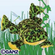 Preview bullfrog