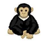 Signature Chimpanzee