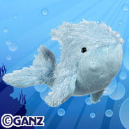 Preview blue whale