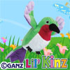 Preview hummingbird