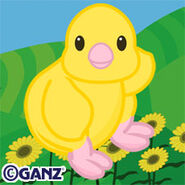 Preview yellow springtime chick