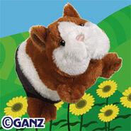 Preview guinea pig