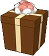 FerretGiftbox