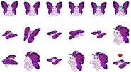 VioletWingButterfly918MA-1