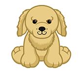 Spaniel Pup