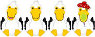 Pelicanmoods