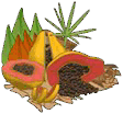 Phoenixfood