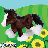 Preview clydesdale