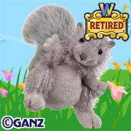 Preview grey squirrel