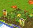 Weedy Pumpkins Day 2