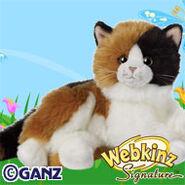 Preview signature calico cat