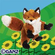 Preview fox