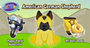 American German Shepherd MP1