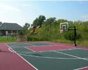 ANT's Basketball Court