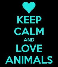 ANT Ava's Lpve Animals Poster