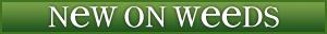 New-on-weeds-header