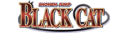 File:Black Cat Wordmark.png