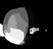 Proteus body