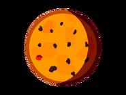 TRAPPIST-1b body