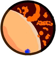 Poltergeist body