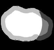 Metis body