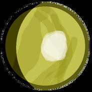 Kepler-62d body