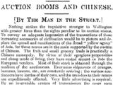 Wellington Sights. AUCTION ROOMS AND CHINESE. Fair Play, Volume I, Issue 23, 2 July 1894