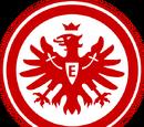2012-13 Eintracht Frankfurt Home