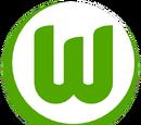2011-12 VfL Wolfsburg Home