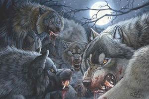 Werewolf pack