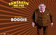 Advertising-poster-fantastic-mr-fox-10927632-1920-1200