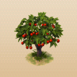 File:CherryTree.png