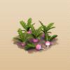 File:Turnips.png
