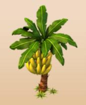 Image Banana Tree Png Westbound Wiki Fandom Powered By Wikia