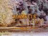 Adams' Cub
