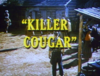 Killer Cougar