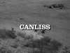 Canliss