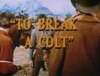 To Break a Colt
