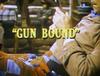 Gun Bound