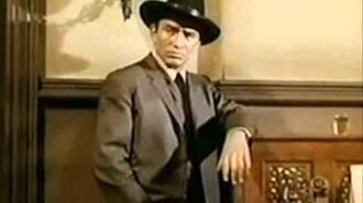 The Virginian(James Drury)