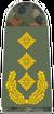 Army Lieutenant General